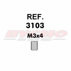 ESPARRAGO ALLEN M3x4 D913 (12u) [RF.3103]